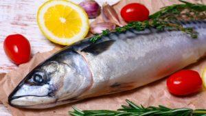 Mercury-Laden Fish
